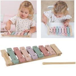 muziekinstrument rose little dutch 3